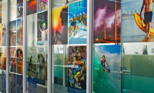 clear graphic films, window graphics